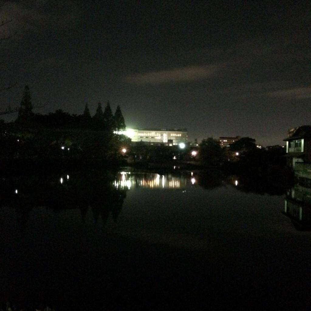 2015年11月19日(木)19時半頃の桃が池